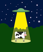 UFO abducts a cow. Space aliens and cattle. Flying saucer