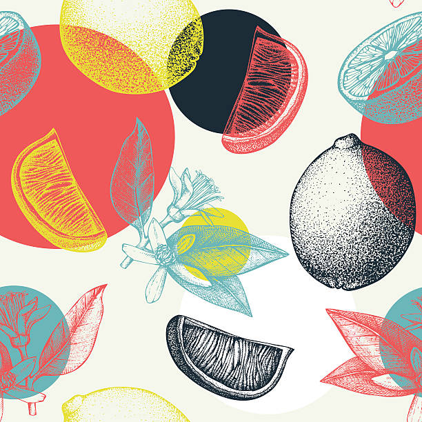 Absrtact citrus background Vector seamless pattern with ink hand drawn lime fruit, flowers, slice and leaves sketch. lemon fruit stock illustrations