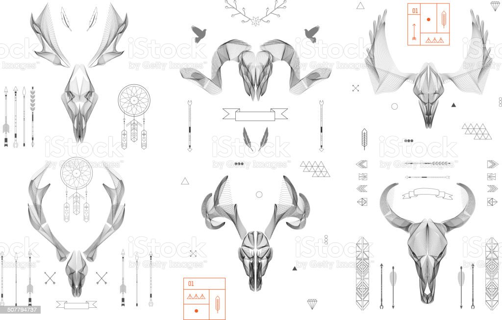 Abstract animal background line art. Skull collection. Antlers. Vector. Isolated. vector art illustration