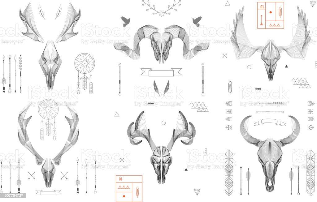 animal Fundo abstrato linhas de arte.  Crânio collection.  Antlers.  Vetor.  Isolado. - ilustração de arte em vetor