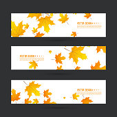 Set of abstract autumn header with yellow leaves of maple. Vector  horizontal footer  with withered foliage.