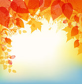 Vector abstract autumn background with orange and yellow leaves.