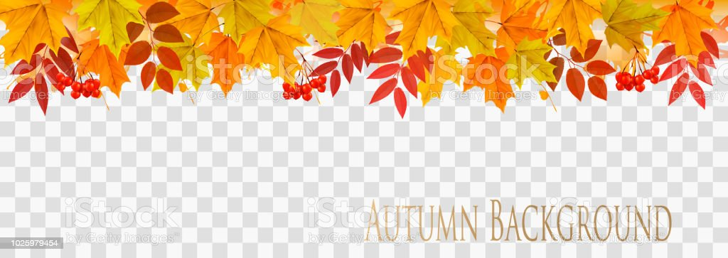 Abstract autumn panorama with colorful leaves on transparent background Vector - illustrazione arte vettoriale