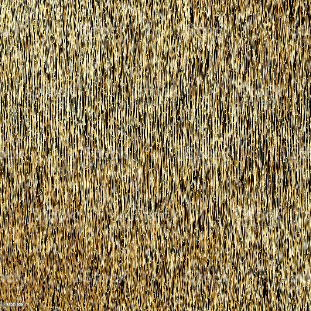 Abstract Background. Golden Threads. Scratched Gold. Vector eps1 vector art illustration