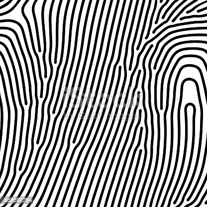 Abstract background of vector organic irregular lines maze pattern