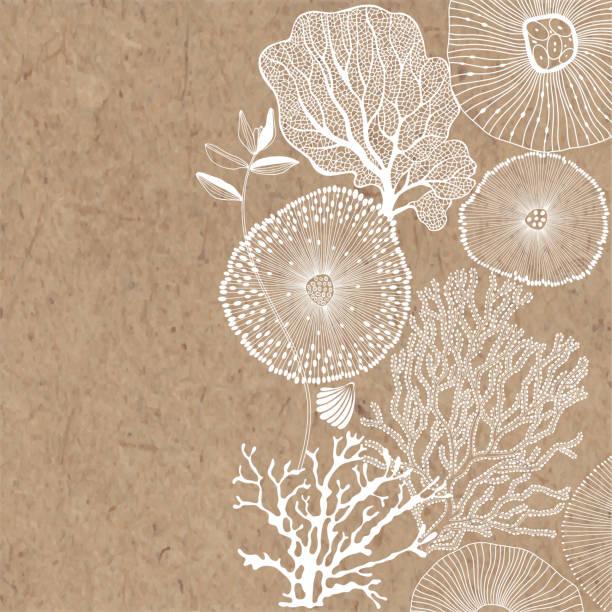 abstrakter hintergrund zu einem marinen thema mit platz für text auf kraftpapier. vektor. perfekt für grußkarten und einladungen. - algen stock-grafiken, -clipart, -cartoons und -symbole