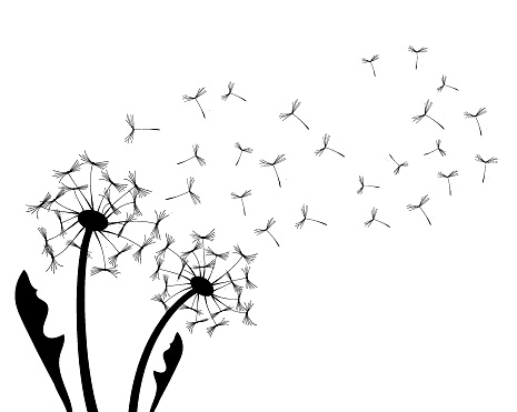 Abstract background with a dandelions vector illustration. The wind blows the seeds of a dandelion. Design template for posters, wallpapers, print.