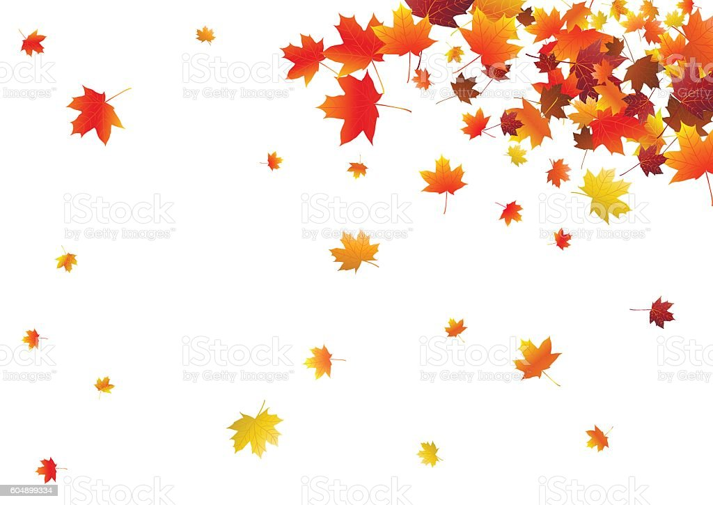 Abstract background with flying maple leaves. vector art illustration