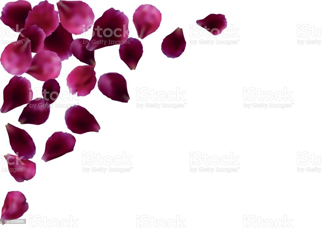 Abstract background with flying pink, red rose petals vector art illustration
