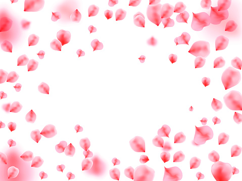 Abstract background with flying pink rose petals.