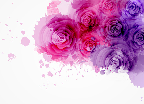 Abstract watercolor background in purple and pink colors with roses. eps10 - contains transparencies