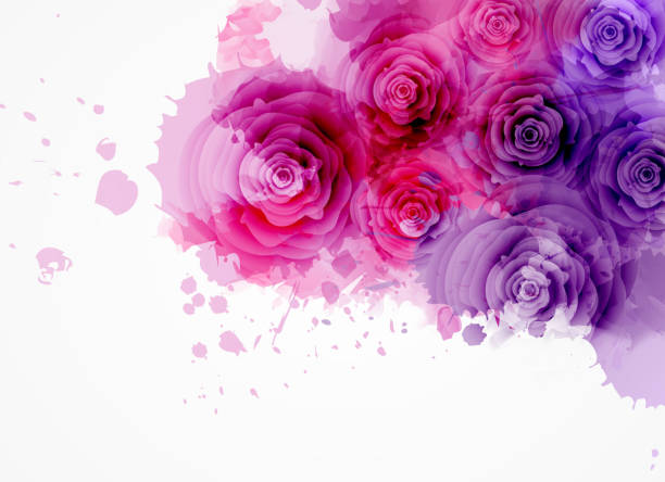 Abstract background with roses Abstract watercolor background in purple and pink colors with roses. eps10 - contains transparencies violet flower stock illustrations