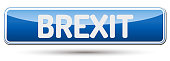 BREXIT - Abstract beautiful button with text.