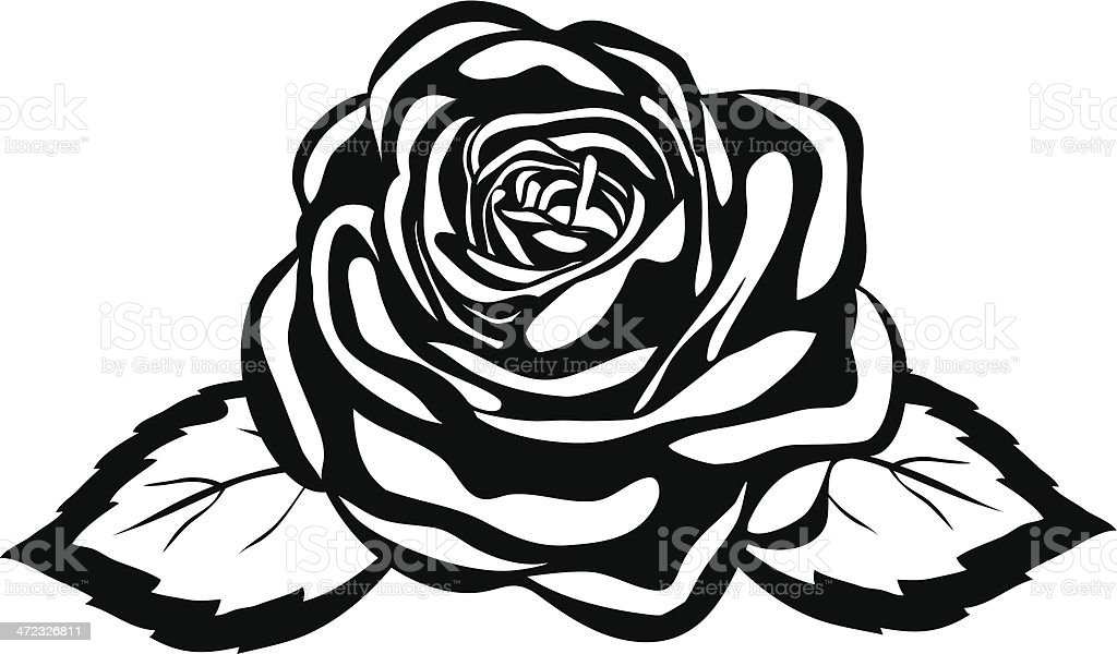 Abstract black and white rose royalty free abstract black and white rose stock vector