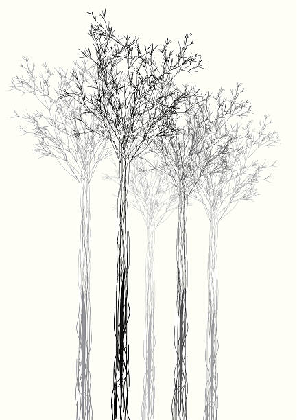 abstract black and white tree shape background abstract black and white tree shape background flourish art stock illustrations