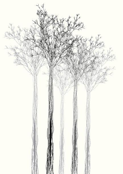 ilustrações, clipart, desenhos animados e ícones de fundo preto e branco em forma de fundo de árvore - preto e branco