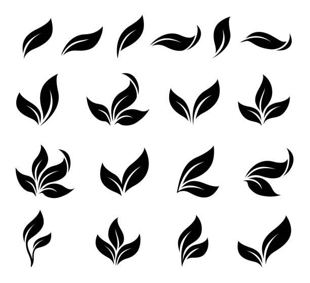 abstrakcyjne czarne liście ikony zestaw - gałązka stock illustrations