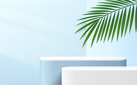 Abstract blue and white round corner cube platform podium. Window lighting and palm leaf. Pastel light blue minimal wall scene. Vector rendering 3d shape for Product display presentation.