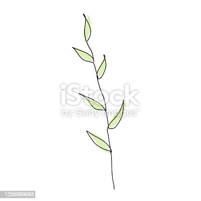 istock Abstract branch with leaves in continuous line art drawing style. 1256999693