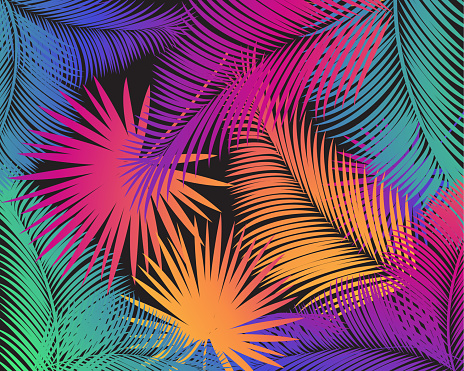 Happy Carnival Music and Dance Festival Abstract Multicolored Tropical Palm Tree Leaves Isolated Pattern, Exotic Jungle Floral background, rainbow vibrant gradient color, for Holiday Event, Masquerade, Mardi Gras New Orlean Carnival, Notting Hill, Brazilian Rio Party, Venecia Carnival poster, invitation, flyer, travel, colorful sunrise gradient decoration vector template