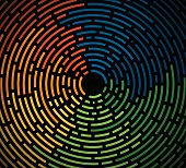 Abstract colorful lines background with circular lines and space for your content.