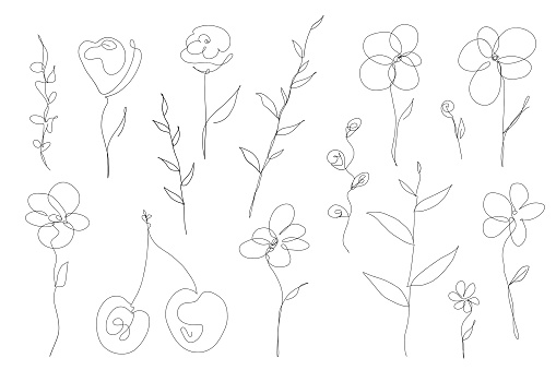 Abstract collection of flowers and leefs in continuous line art drawing style