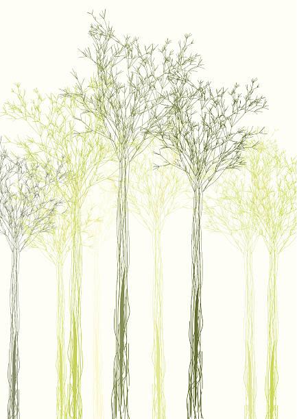 bildbanksillustrationer, clip art samt tecknat material och ikoner med abstract color tree shape background - abstract silhouette art