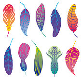 Vector Illustration of a beautiful collection of Abstract Colorful Feathers