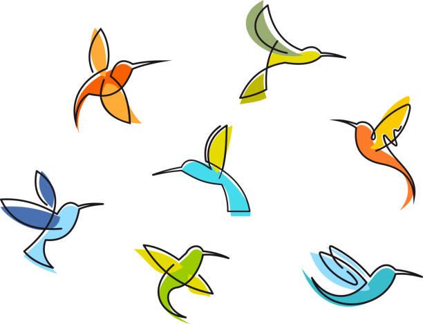 abstract colorful hummingbirds - hummingbird stock illustrations
