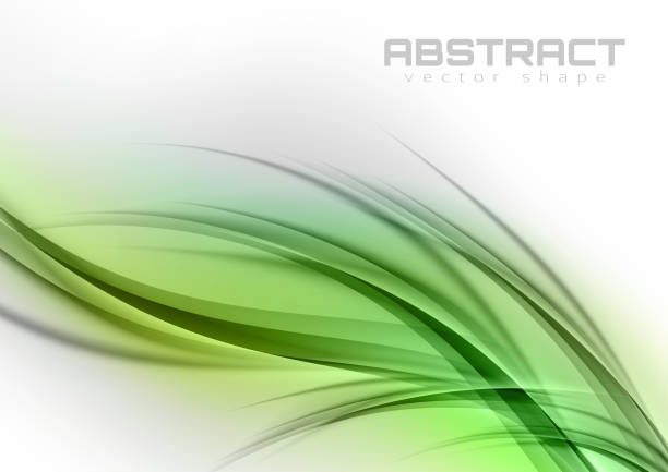 Abstract Curves vector art illustration
