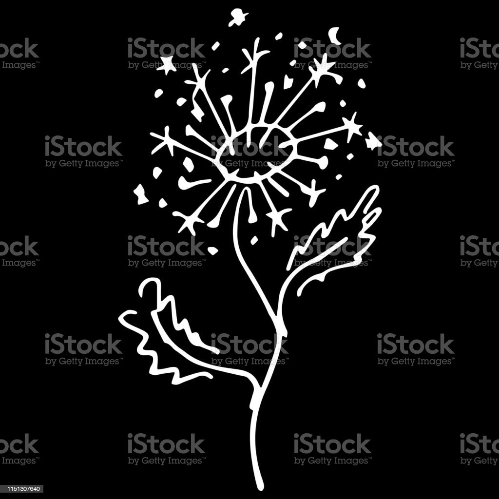 Abstract Dandelion Flower Outline Icon Isolated On Black
