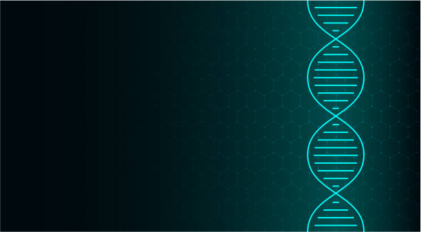 abstract dna molecule, neon helix on green background. medical science, genetic, biotechnology, chemistry, biology. - дезоксирибонуклеиновая кислота stock illustrations