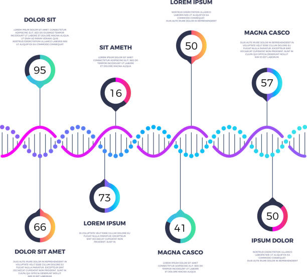 stockillustraties, clipart, cartoons en iconen met abstracte dna molecuul vector business infographic met opties - dna