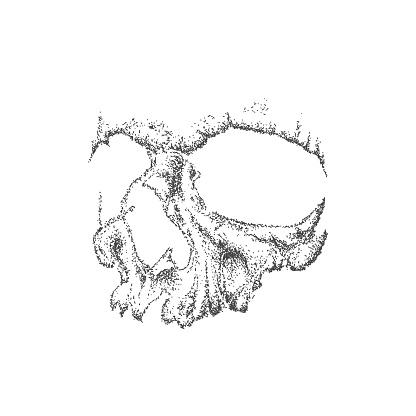 Abstract dotwork grunge skull.