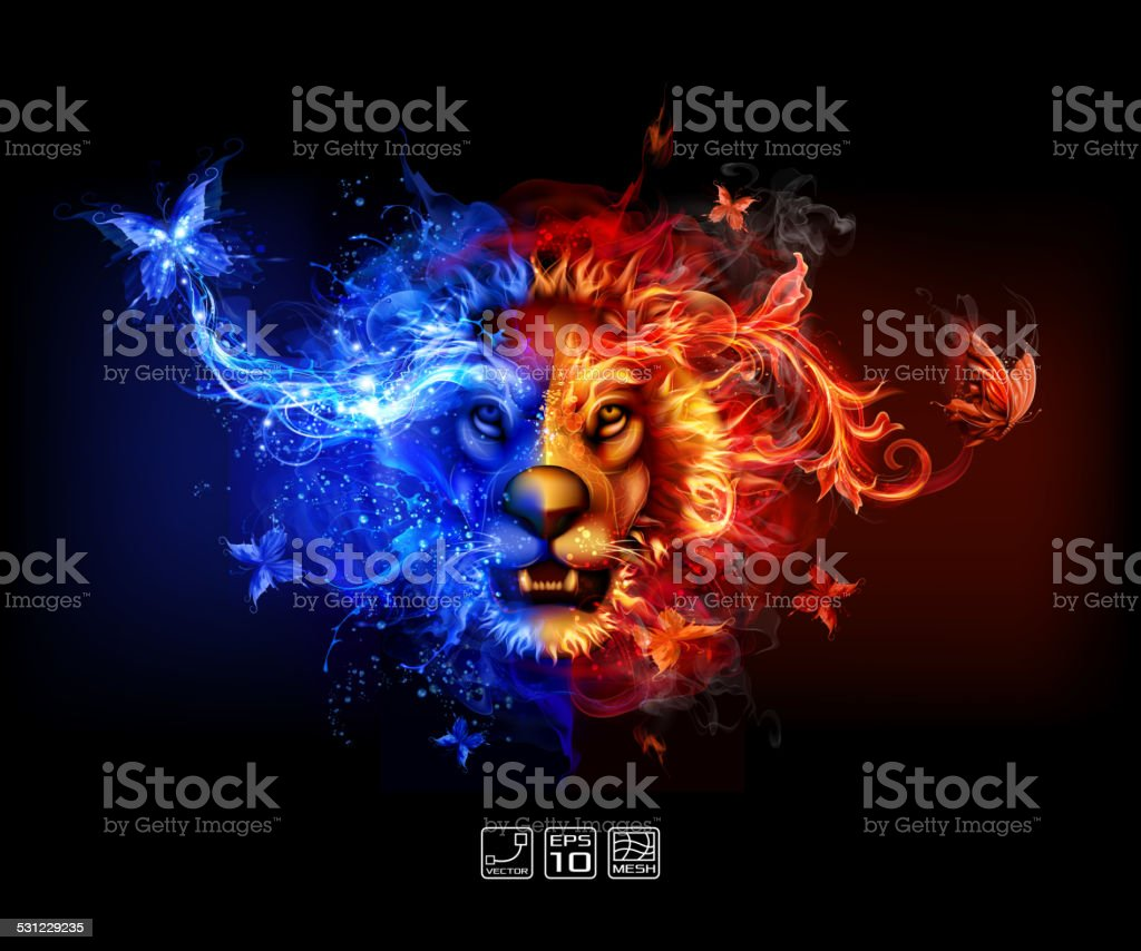 Abstract fire and water lion stock vector art more images of abstract fire and water lion royalty free abstract fire and water lion stock vector art biocorpaavc Choice Image