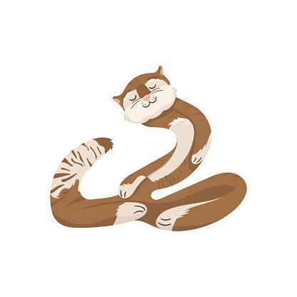 Gato de yoga flexível abstrato.