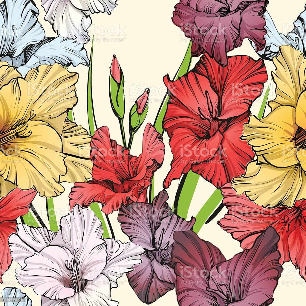 abstract floral blooming gladiolus background texture hand drawn vector illustration vector art illustration