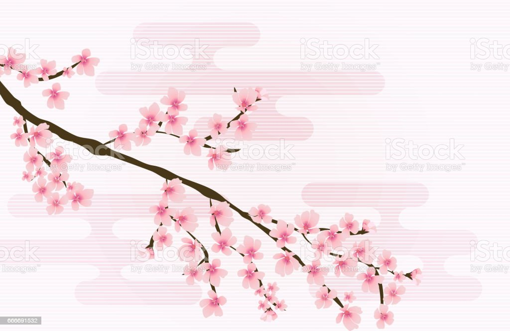 Abstract Floral Sakura Flower Japanese Natural Background Vector vector art illustration