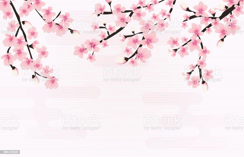Abstract Floral Sakura Flower Japanese Natural Background Vector vector art illustration