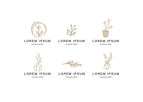 Abstract Floral Vector Signs or Logo Templates Set. Retro Feminine Hand Drawn Illustration Emblems for Beauty Salon, SPA or Wedding Boutiques Isolated