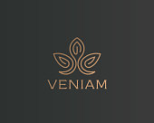 Abstract flower lotus icontype. Luxury crown linear icon. Gold premium spa hotel vector sign