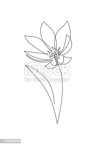Abstract flower in continuous line drawing style. Black line sketch on white background. Vector illustration