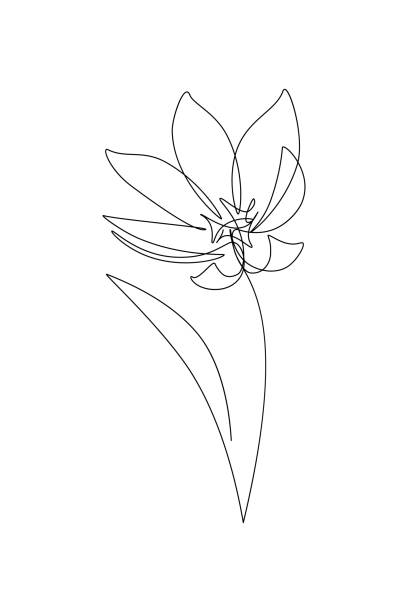 Abstract flower Abstract flower in continuous line drawing style. Black line sketch on white background. Vector illustration single flower stock illustrations