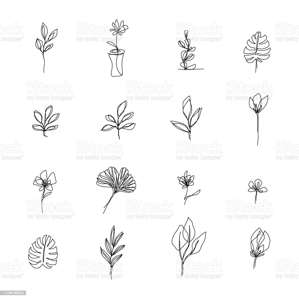 Abstract Flowers One Line Drawing Beauty Flowers Isolated On White Minimalistic Style Continuous Line Stock Illustration Download Image Now Istock