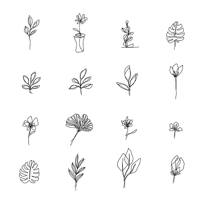 Abstract flowers one line drawing. Beauty flowers isolated on white. Minimalistic style. Continuous line