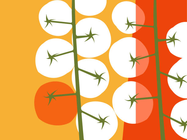 abstract fruit and vegetable design in flat cut out style. cherry tomatoes with negative space. - cherry tomato stock illustrations