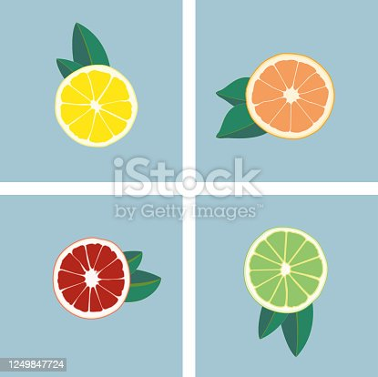 Drawing of lemons, orange and lime. Green. orange, red and yellow. Fruit print with vitamin