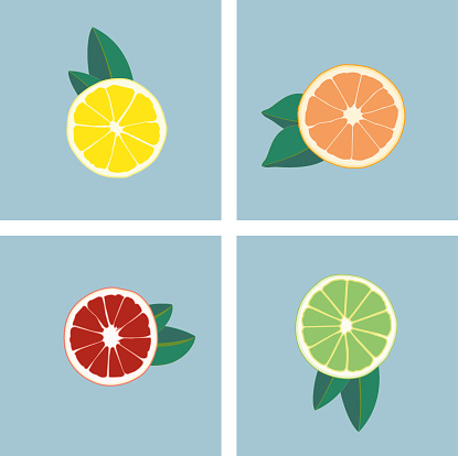 Abstract fruit multi color. Oranges, lemons and limes