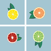 Modern and simple citrus juice icon set. Orange, lemon, lime and grapefruit. Isolated vector design.