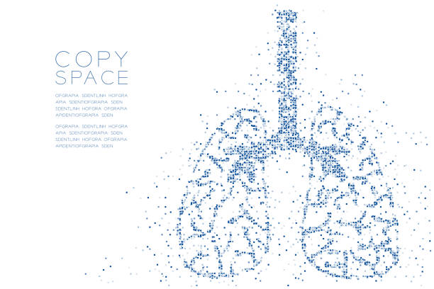stockillustraties, clipart, cartoons en iconen met abstracte geometrische vierkante doos patroon long vorm, medische wetenschap orgel concept ontwerp blauwe kleur illustratie geïsoleerd op een witte achtergrond met kopie ruimte, vector eps-10 - longen